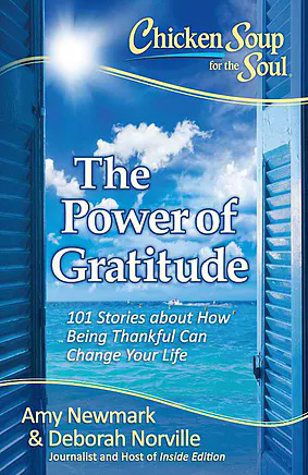 Chicken Soup for the Soul-The Power of Gratitude